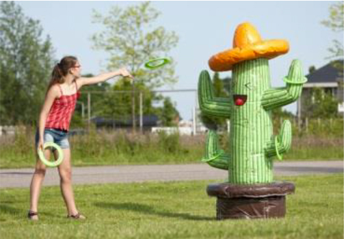 Louer le Cactus Toss gonflable