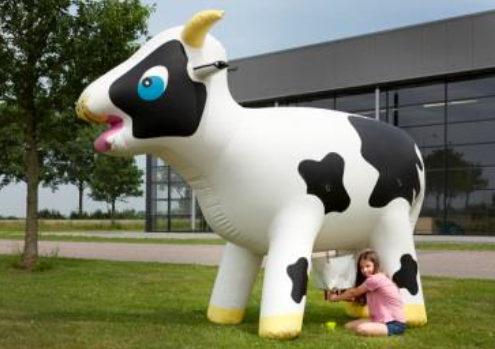 Location vache à traire gonflable